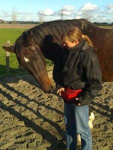 Natuurlijk aan het werk met paard Mister